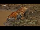 Nat Geo Wild: Путешествие короля джунглей (1080р)