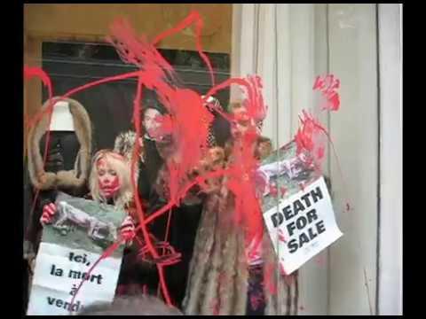 История. ПЕТА атакует бутик Готье Жан-Поль Готье - убийца PETA Takes Over Jean-Paul Gaultier Boutique in Paris