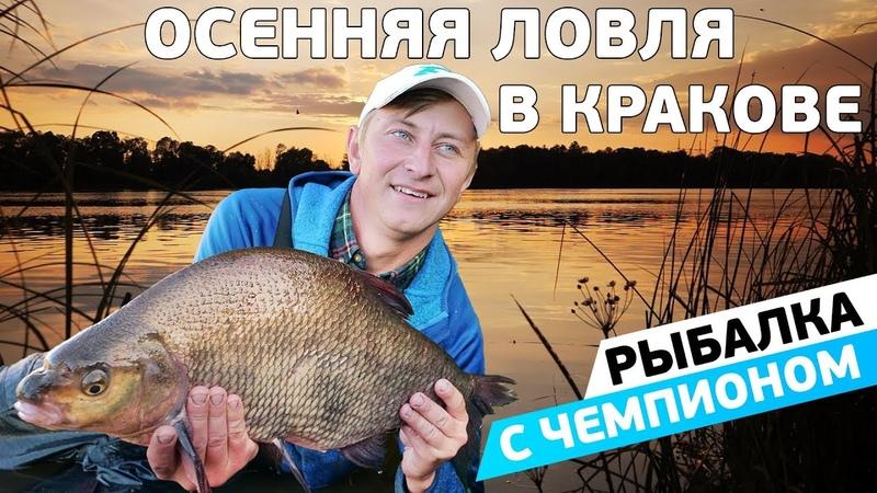 Фидерная ловля осеннего леща на реке Висла! Рыбалка с чемпионом!