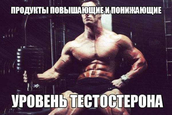 Повышение тестостерона у мужчин продукты питания