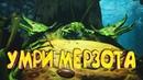 🎮 Darksiders 3 PC 🔥 Валим рейдовского босса ГРЕХ ЛЕНЬ 🔥