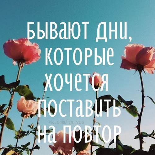 Фото №456246990 со страницы Алины Гильмуллиной