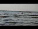 Центральный пляж Лера решила вспомнить свою вольную программу