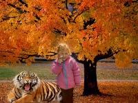 """Предпросмотр схемы вышивки  """"золотая осень """". золотая осень, осень,листопад,дерево, предпросмотр."""