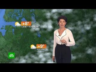 Прогноз погоды на 29 сентября
