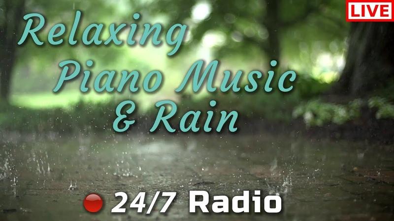 Relaxing Piano Music Rain 247 Livestream Radio | Relaxing, Study, Meditation, Sleep