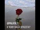 Pustota.dushi_BmXqagenVLk.mp4