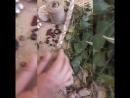 Обережные бусы из трав