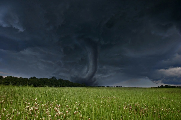 Разница между смерчем и торнадо Телевизионные каналы частенько сообщают нам о разгуле стихии в какой-нибудь части земного шара. Некоторым стихийным бедствиям посвящены целые познавательные