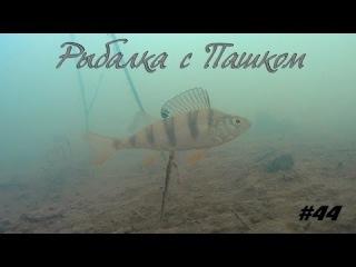 Рыбалка с Пашком  Зима подводные съемки