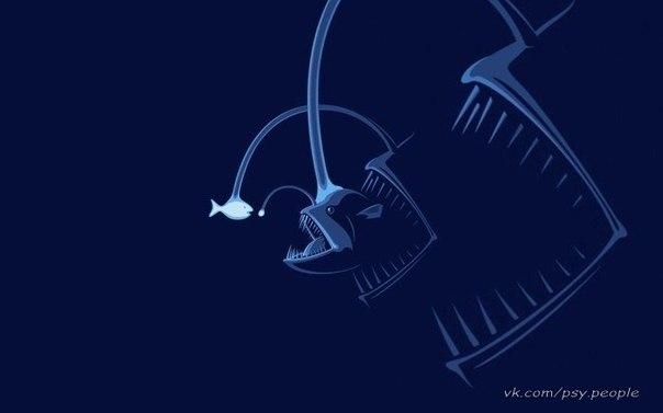 Всегда есть рыба побольше...глубже, чем кажется на первый взгляд.