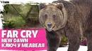 Far Cry New Dawn Где найти медведя По ком ревет медведь