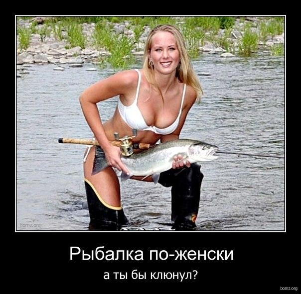 вот это рыбка жених рыбак на живца ...: vk.com/page-66606192_46950918