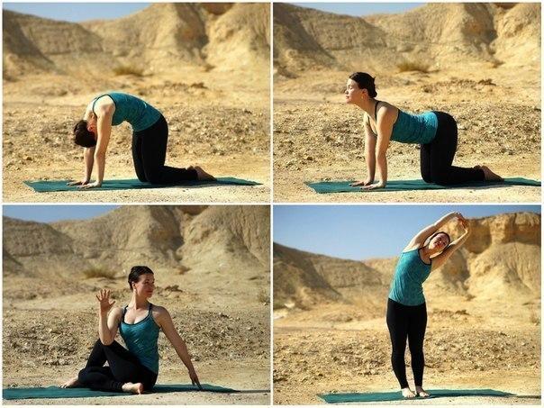 4 лучших упражнения для растяжки и оздоровления спины…. (1 фото) - картинка