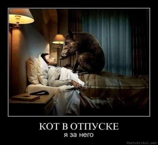 Фото №284834874 со страницы Сергея Прилько