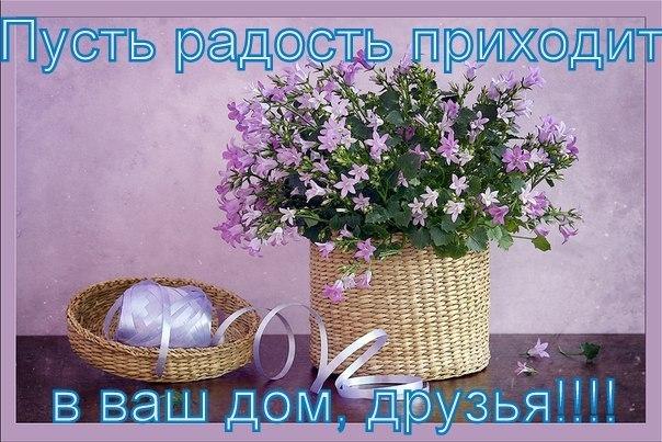 http://cs405627.vk.me/v405627000/b2d5/tJafp9ci-NE.jpg