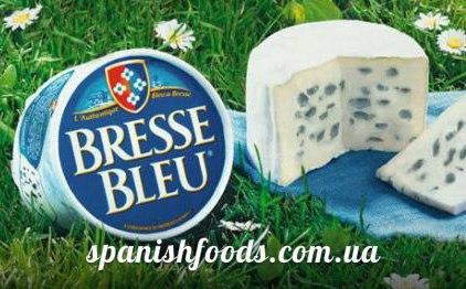 купить в Украине вкусный сыр де бресс