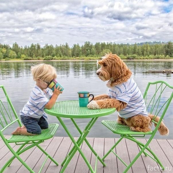 Приемный малыш и его пес всегда вместе Это лучшие друзья Бадди и Рейган. Они практически неразлучны, их везде можно увидеть вместе. Однако Бадди это ребенок, а Рейган лабрадудль. Малыш приемный.