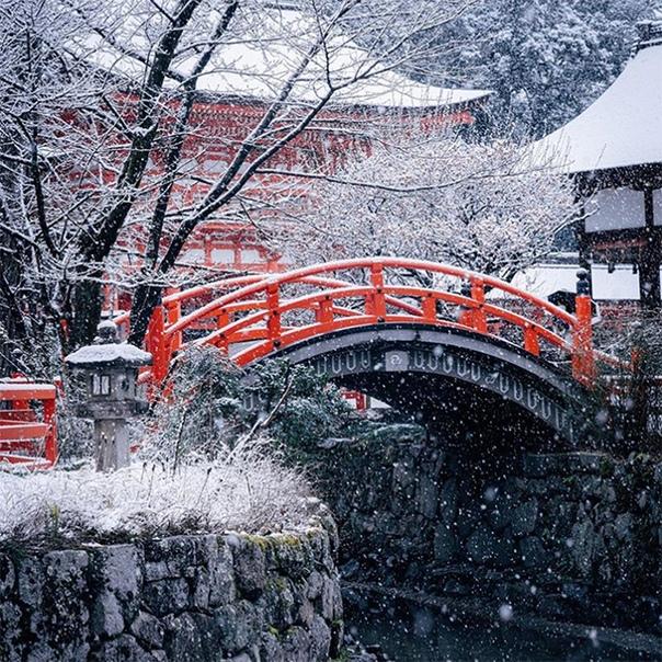 Япония известна своей яркой сменой сезонов: весной там цветет сакура, осенью  розовеют клены