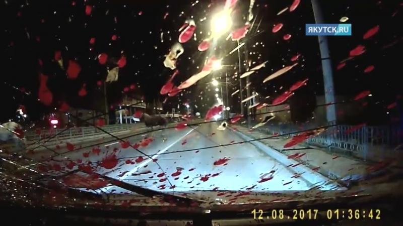 В Якутске водителя, насмерть сбившего ло... скорости (480p).mp4