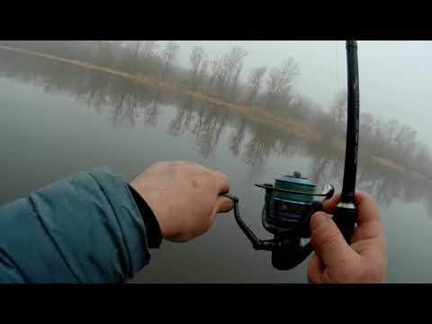 Поиски рыбы на Донце фидером в марте