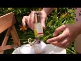 Лайфхак. Как дозаправить карандаш с маслом для ногтей с ниимом Dr.Hauschka