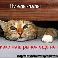Максим Стешенков, Омск, id211877109