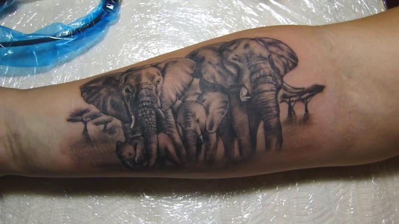 Слоны по собственному эскизу