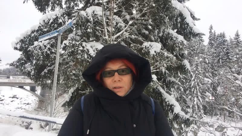 Иматра (Финляндия) Красоты и самоубийцы...