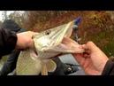 Рыбные точки дают поклевки На джиг поздней осенью
