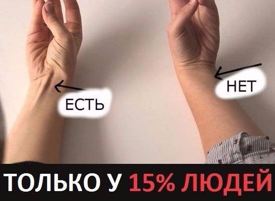 ТОЛЬКО У 15% ЛЮДЕЙ ТАКИЕ РУКИ