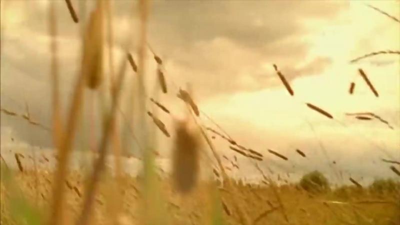 Сергей Есенин Любовь хулигана ! клип 2018 Заметался пожар голубой ! Исповедь Сергей Безруков