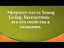 Эфирные масла Young Living Бессмертник все свойства в названии