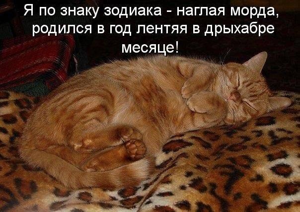 http://cs416719.vk.me/v416719909/55af/yk7YozelA98.jpg