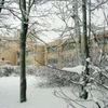 Школа 289 поселок Можайское