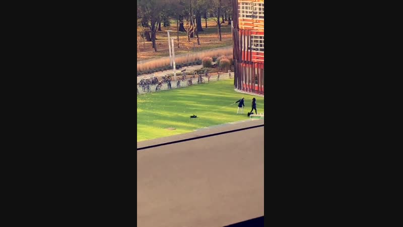 Woman dragging her dog in the park