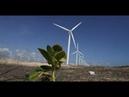 Conheça a energia eólica no Mundo e no Brasil
