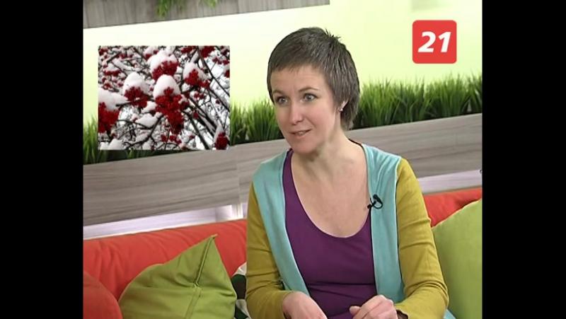 Екатерина Панфилова рассказывает о своей новой книге - «Ашуни. Сказка с рябиновой ветки»