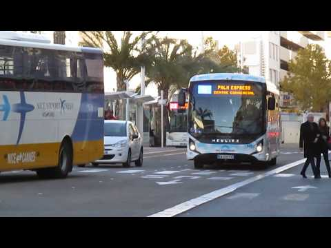Palm Bus Heuliez Bus GX Linium