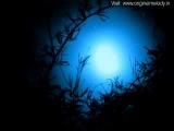 Indian songs 2014 hitstop hindi music Indian most video bollywood popular youtube album cool Mp3 hd