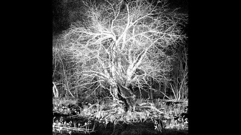 IC-98: Abendland (II: The Place That Was Promised), 2013–2014, HD » Freewka.com - Смотреть онлайн в хорощем качестве