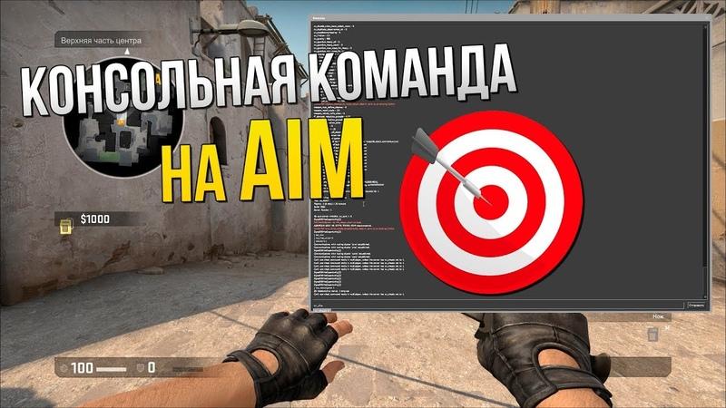 Консольная команда на Aim в CS GO Попадай только в голову Новый способ троллинга