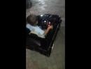 Ernar car