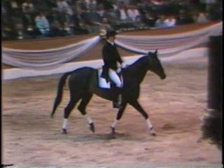 Andrzej Sałacki i Czcionka - Verden 1988
