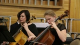 Оркестр Musica Integral - G. F. Telemann Concerto for 2 violas