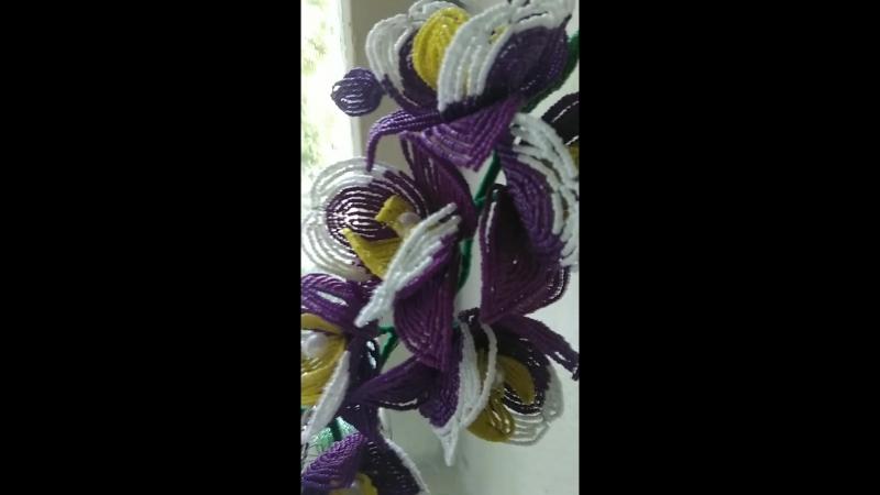 Орхидея для постоянной клиентки из г. Харцызск 🌸🌸🌸