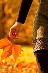 Отцвели цветы, падают листья, птицы молчат, лес пустеет и затихает.ОСЕНЬ. - Страница 6 TQBOt3L5BMA