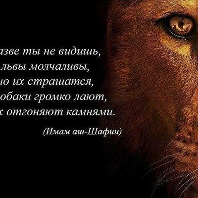 Абдугаппар Садиров, 8 февраля , Москва, id206680508