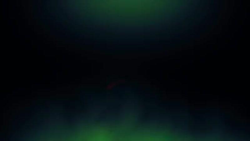 5 Criaturas de Otras Dimensiones Captado en Video