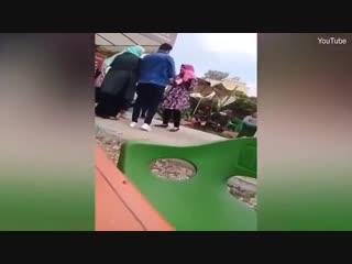 Египтянку выгнали из университета за объятия с женихом